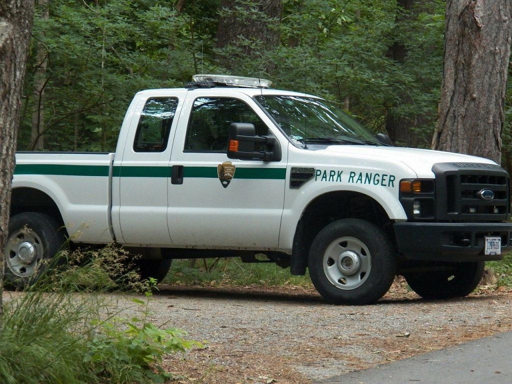 forest ranger ute